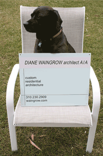Contact Diane Waingrow Architect